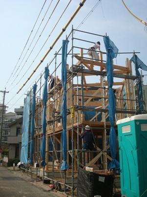 土市町の家 建て方2.jpg