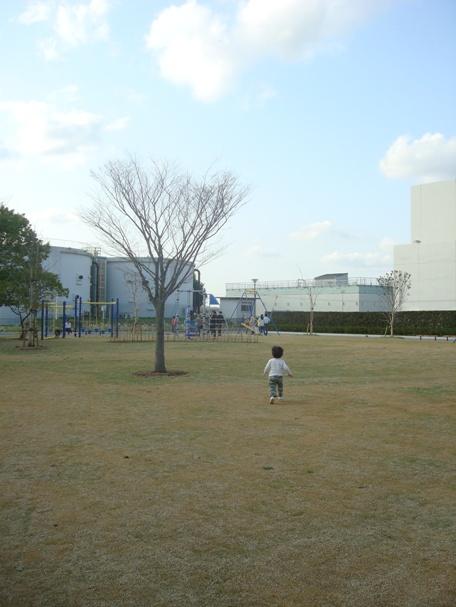 桜0.jpg